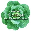 Oregon Harvest for Schools-cabbage